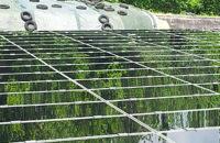 Photovoltaik und Solarreinigung 2019